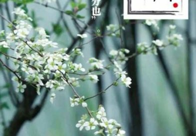 旅日華人诗作《塞北之春分》